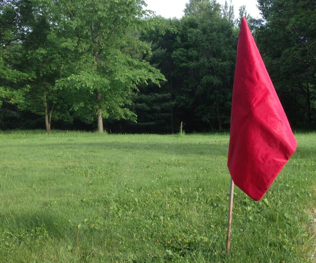 Red flag in real estate